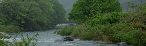 東白川村の自然